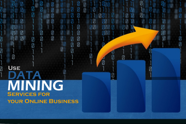 Use Data Mining Services for Your Online Business
